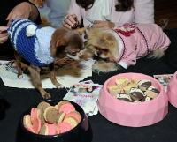 Vanderpump Pets launch event #119