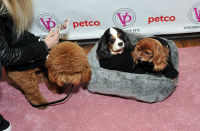 Vanderpump Pets launch event #122