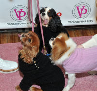 Vanderpump Pets launch event #130