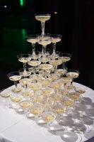 Hark Society's 5th Emerald Tie Gala (Part I)  #201