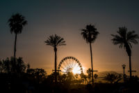 Coachella 2017, Weekend 2 #18