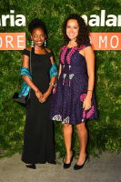 Malaria No More 11th Annual Gala #39