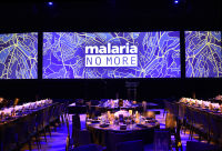 Malaria No More 11th Annual Gala #327
