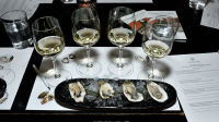 Oysters and Chablis hosted by William Févre Chablis #2