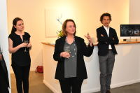 Jean-Claude Mas of Domaines Paul Mas Celebrates Wine & Art at The Curator Gallery NYC, Previews Astelia AAA wine #27