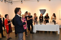 Jean-Claude Mas of Domaines Paul Mas Celebrates Wine & Art at The Curator Gallery NYC, Previews Astelia AAA wine #49