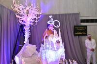 The 2017 ChaShaMa Gala #17