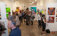 Clio Art Fair The Anti-Fair for Independent Artists #67