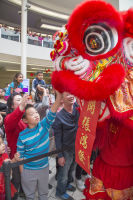 Lunar New Year 2018 at The Shops at Montebello #41