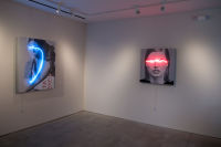 Galleria Ca' d'Oro presents Javier Martin: Blindness The Appropriation of Beauty curated by Robert C. Morgan #23