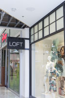 LOFT Plus Pop-up Party - Glendale #110