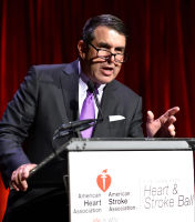 2018 Heart and Stroke Gala: Part 2 #251