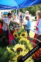 """Shop the Nutrition Rainbow"" Tour at Sag Harbor Farmers' Market #34"