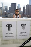 BIG PARK Spring Summer 2015 #121