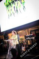 Brazil Foundation XII Gala Benefit Dinner NY 2014 #122
