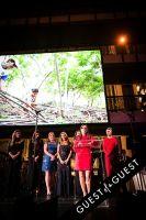 Brazil Foundation XII Gala Benefit Dinner NY 2014 #198