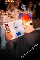 Brazil Foundation XII Gala Benefit Dinner NY 2014 #211