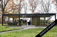 Glass House 65th Anniversary #135