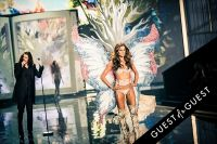 Victoria's Secret 2014 Fashion Show #350