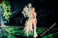 Victoria's Secret 2014 Fashion Show #424