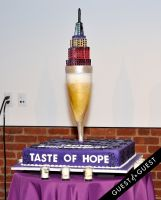 American Cancer Society Taste of Hope #21