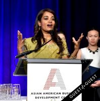 Asian Amer. Bus. Dev. Center 2015 Outstanding 50 Gala - gallery 1 #219