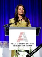 Asian Amer. Bus. Dev. Center 2015 Outstanding 50 Gala - gallery 1 #249
