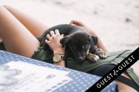 Puppies & Parties Presents Malibu Beach Puppy Party #28