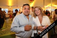 East End Hospice Summer Gala: Soaring Into Summer #94