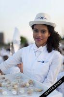 Le Diner En Blanc 2015 #124