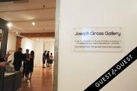 Pareidolia at Joseph Gross Gallery #15