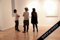 Pareidolia at Joseph Gross Gallery #53