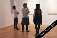 Pareidolia at Joseph Gross Gallery #54