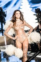 Victoria's Secret Fashion Show 2015 #253