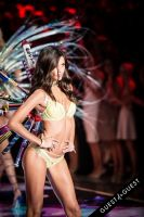Victoria's Secret Fashion Show 2015 #304