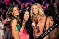 Victoria's Secret Fashion Show 2015 #324