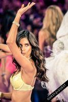 Victoria's Secret Fashion Show 2015 #326