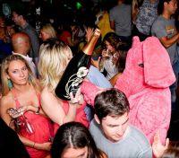 Pink Elephant 6 June 09 #124