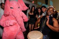 Pink Elephant 13 June 09 #11