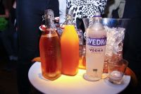 PAPER and Svedka for Ladyfag #40
