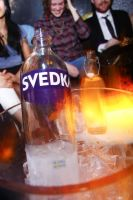 PAPER and Svedka for Ladyfag #70