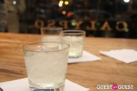 Project Green Chic #82