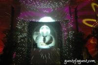Young Lions Disco Ball #61