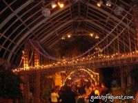 Botanical Gardens Winter Ball #37