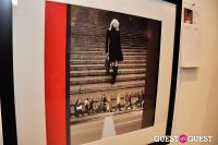 Humane Society of New York's Third Benefit Photography Auction #206