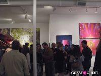 Lisa Eisner's 'Psychonaut' Party #38