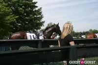 85th Running of Virginia Gold Cup Steeplechase #23