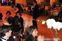 69th Annual Bal Des Berceaux Honoring Cartier #8