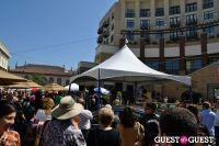 Pasadena Chalk Festival #319