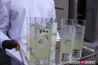 The Frick Collection's Summer Garden Party #115